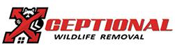 Georgetown Wildlife Removal